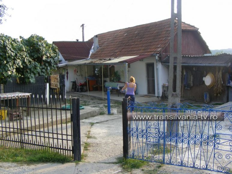 Dabaceni-Azil privat-5