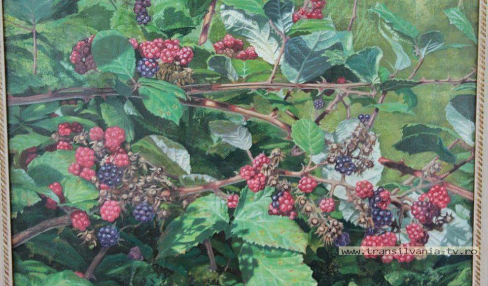 Ileanda-Vasile Both-Expozitie de pictura- (1)
