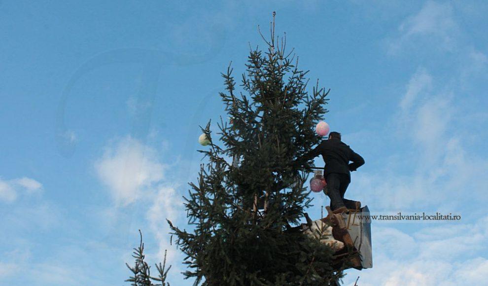 lemniu-traditie-cu-buldo-6