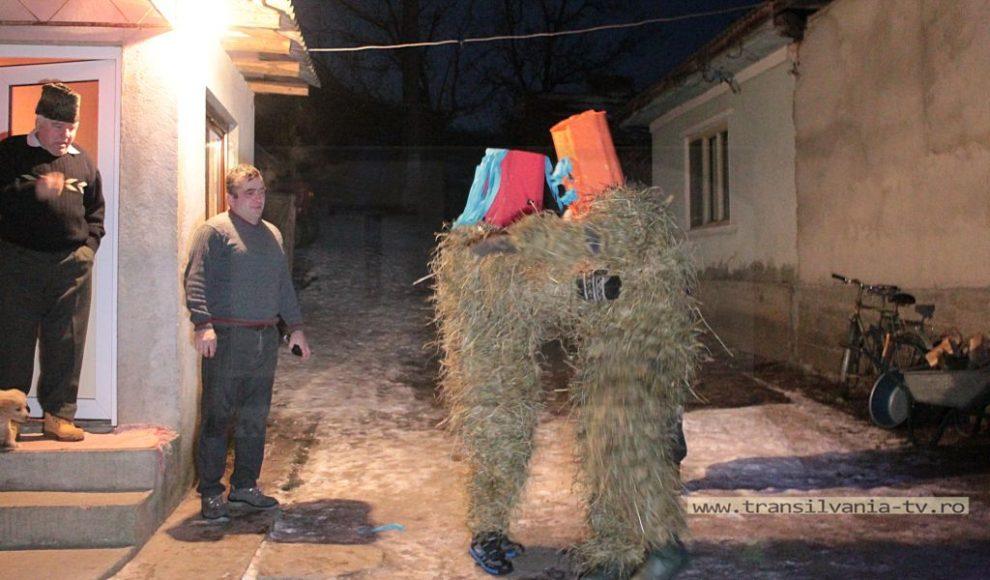 Rus-Jocul mosutilor 2017 (18)
