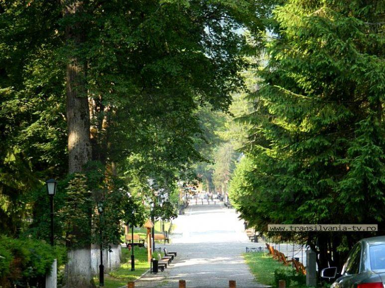 Borsec 14 - Bulevardul 7 Izvoare din Statiune